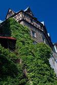 Castle - Cheastnuty Tarrace — Stock Photo