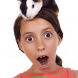 Guinea pig on my head! — Stock Photo