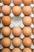 Missing egg — Stock Photo