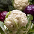 Cauliflower and other cabbages - Stock Photo