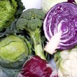 Cabbage assortment — Stock Photo