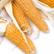 Stock Photo: Dried corn