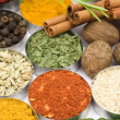 Colors of spices — Stock Photo