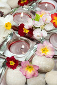 Flowers, candles and stones — Stock Photo