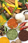 Peppers and spices — Stock Photo