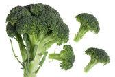 Broccoli over white — Stock Photo