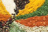 Textures of spice — Stock Photo