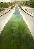 Irrigation channel — Stock Photo