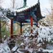 Pavilion in chinese style with the snow — Stock Photo #1837584