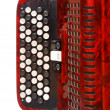 ������, ������: Fingerboard of red russian folk button accordion