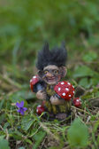 Kind troll — Stock Photo