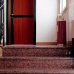 Red door — Stock Photo #1799708