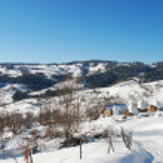 Winter scene — Stock Photo #2295656