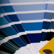 Stock Photo: Color chart