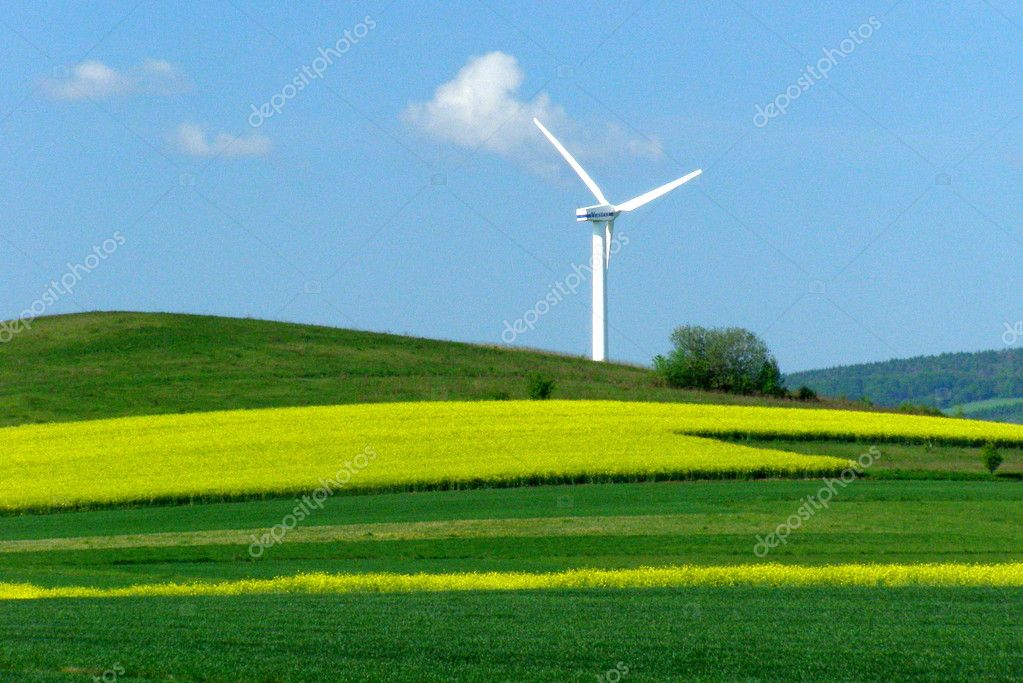 Windmill on a yellow-green field, alternative energy — Stock Photo #2006648