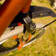 Stock Photo: Mountain biking motion