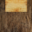 Vintage old wooden texture — Stock Photo #1836354