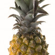 Pineapple — Stock Photo #1783750