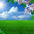 Spring landscape - Stockfoto
