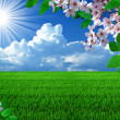 Spring landscape - Stock Photo