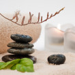 Zen-like SPA — Stock Photo
