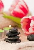 Spring zen like SPA — Stock Photo