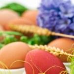 Easter egg — Stock Photo #2606878