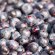 Stock Photo: There are plenty of berries