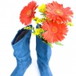 Dark blue boot and flowers — Stock Photo #1782789