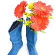 Dark blue boot and flowers — Stock Photo