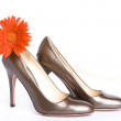 Beige-golden female  shoes — Stock Photo