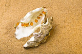 Shell with a pearl beads and amber — Stock Photo