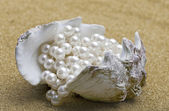 Shell with beads — Stock Photo