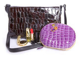 Handbag And cosmetics subjects — Stock Photo