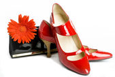 Shoes and handbag and flower — Stock Photo