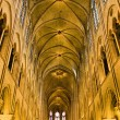 Notre Dame  de paris - Stock Photo