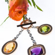 Rose And jeweller female ornament — Stock Photo