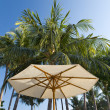 Beach umbrella On background of palm — Stock Photo