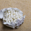 Exotic sea shell with a pearl beads lies — Stock Photo #2489482