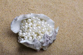Exotic sea shell with a pearl beads lies — Stock Photo
