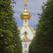 Russia, Petrodvorets-   Peterhof Palace — Stock Photo