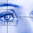 Stock Photo: Eye scan