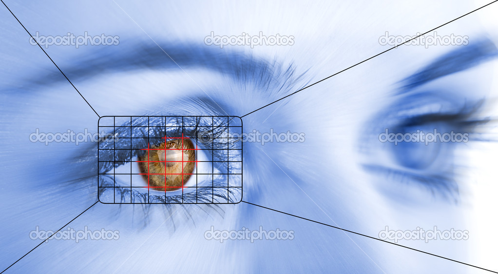 Eye system security identification.  Stockfoto #1794385