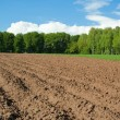 Field — Stock Photo #2085078