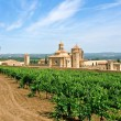 Monastery  and vineyards — Stock Photo