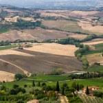 Beautiful summer landscape in Tuscany — Stock Photo #1803864