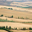 Beautiful Tuscany landscape in summer — Stock Photo