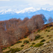 The Pyrenees view — Stock Photo
