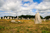 Megalithic menhirs alignment in Carnac — Stock Photo