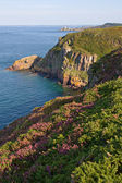 View of the Cliffs in the brittany coast — Stock Photo
